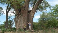 LGBT Africa Travel - Exploring Botswana